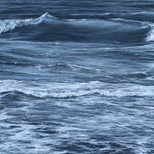 """""""Black and white wave study"""" 30cm x 60cm acrylic on linen canvas"""