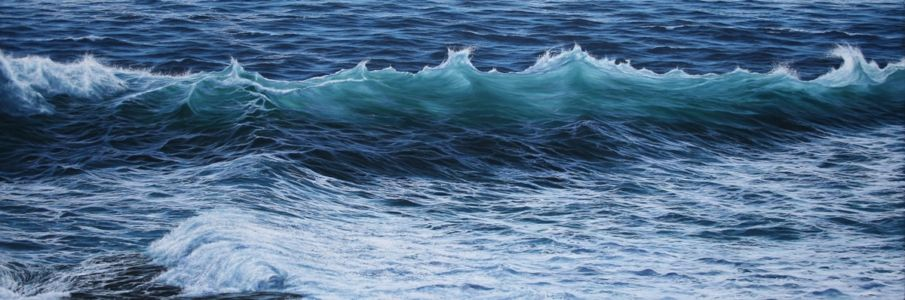 """A Tapestry Of Motion And Serenity"" 50cm x 150cm oil on canvas"