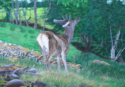 """""""Deer browsing the leaves at Applecross"""" 70cm x 100cm acrylic on canvas"""