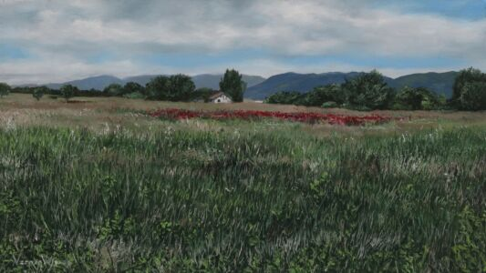 """""""Macedonian scenery and poppies"""" 13.7cm X 25cm Oil on panel"""